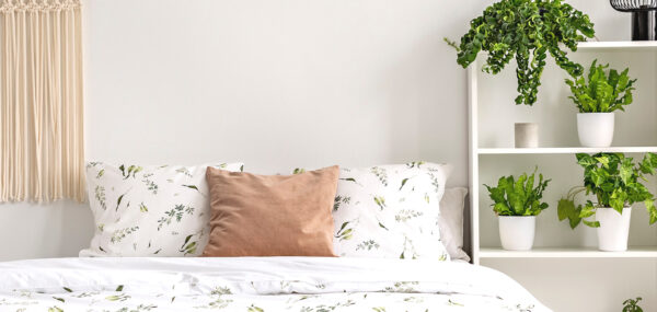 หมอน (Pillow)